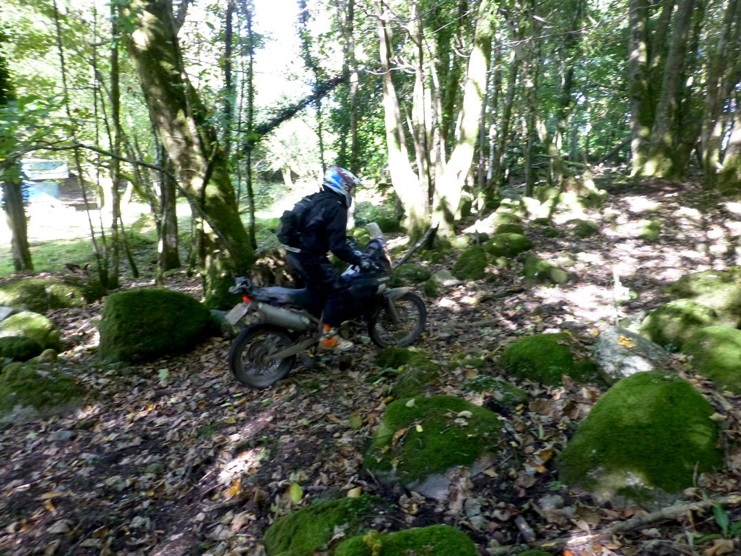 Reviewing the CCM GP450 Adventure