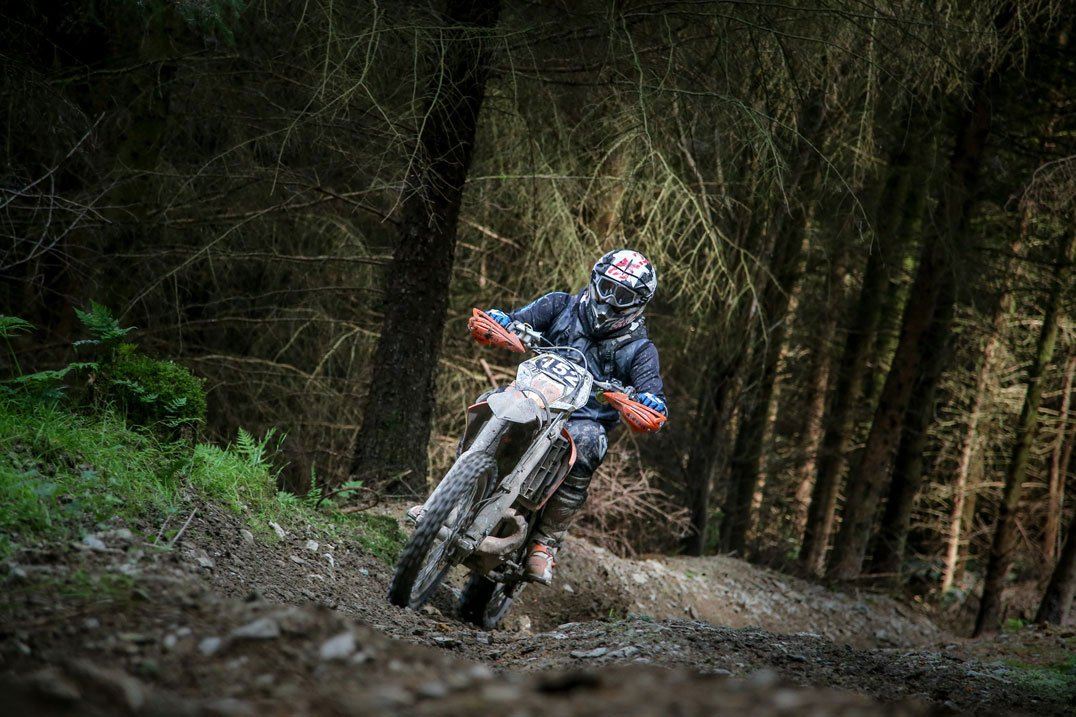 KTM in the woods