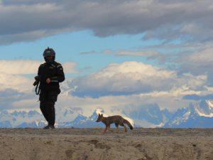 Adventure motorcycle trip in Patagonia